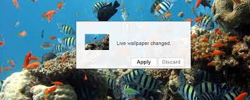 how to set live wallpapers animated