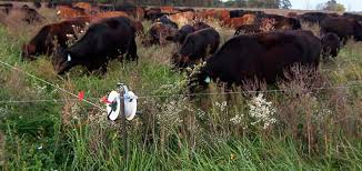 Https Www Canr Msu Edu Uploads 236 92931 Fencing Systems For Livestock Jerry Lindquist March 13 2017 Pdf