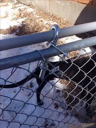 How To Build A Roll Bar Fence Dog Proof Fence Dog Yard Diy Dog Stuff