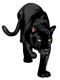 Black Panther Wall Decal Wallmonkeys Com