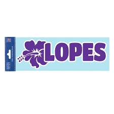 Potter Decal Hibiscus Lopes