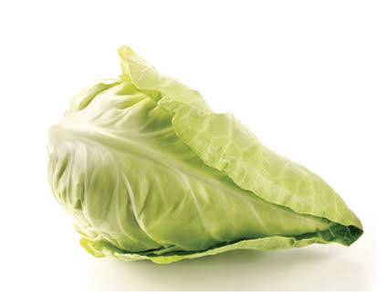 Image result for white cabbage""