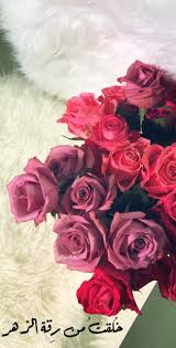 نـيفيلـيباتـآ وكأن الورد قبل لقاك غصن وي زهر حين تلمسه