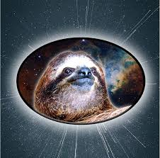 Amazon Com Sloth Head Sticker Funny Space Decal For Car Or Laptop Graphic Arts Crafts Sewing