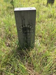 Frances Adeline Green Ingle (1865-1921) - Find A Grave Memorial