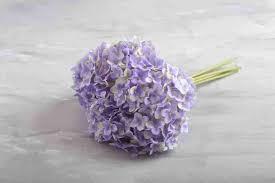 أجدد صور ورد أحلى أشكال الورود مجلة رجيم