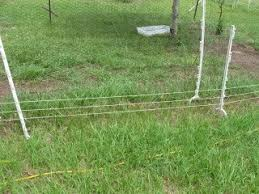 How To Build A Safe Electric Chicken Fence