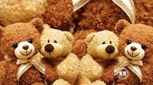 wallpaper teddy bear big hd 2020 live