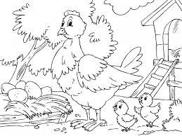 gallina y sus pollitos para imprimir