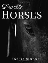lovable horses a beautiful nature