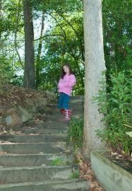 houston mercer botanical garden and