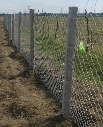 Galvanized Iron Gi Agricultural Chain Link Fencing Rs 5 Square Feet Id 20219600333