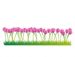 30 free flower beds graphics | tag | UI Download