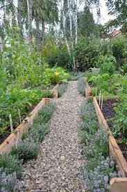 backyard herb garden arrangement ideas 16