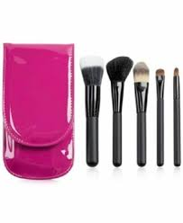 brush set with pink travel carrying