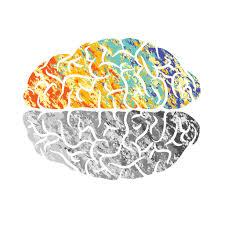 Image result for psychopharmacology
