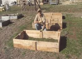 raised garden bed from pallet wood