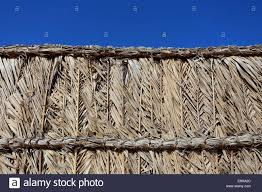 Woven Palm Fronds High Resolution Stock Photography And Images Alamy