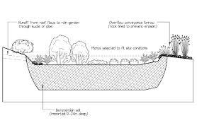 seattle rain gardens ecoyards
