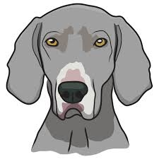 Weimaraner Dog Decal Dog Lover Decor Vinyl Sticker Walmart Com Walmart Com