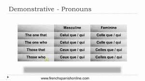 demonstrative in french part ii