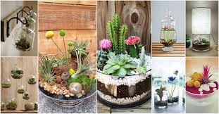 decor ideas for your indoor garden