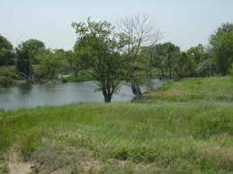 Byron Walker Wildlife Area | Kingman, KS 67068