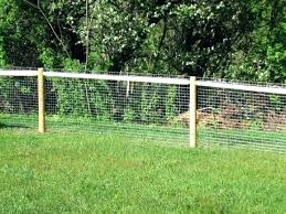 Dog Dog Fence Ideas For Backyard