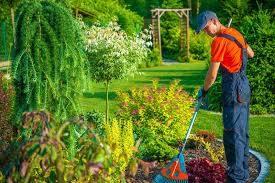 skilled landscape gardeners