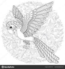 Parrot Tropical Bird Vector Illustration Coloring Book Adult Older