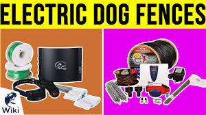 7 Best Electric Dog Fences 2019 Youtube