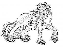 Verschillende Dieren Hand Getekende Schetsen Giraf Paard Gekko