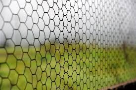 Tips On How To Install A Chicken Wire Fence To Protect Your Garden Gardenerdy