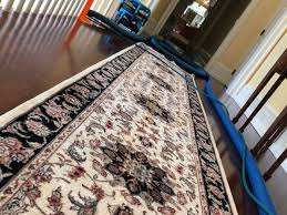 area rugs paradise cleaning services