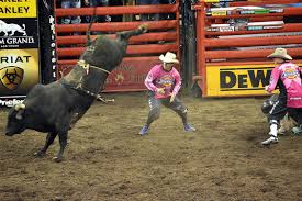 90 elegant bull riding wallpaper this