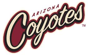 Salute To Non Profit Night With The Arizona Coyotes