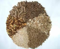 کارخانه تولیدی انواع خوراک شترمرغ - شترمرغ آسیا