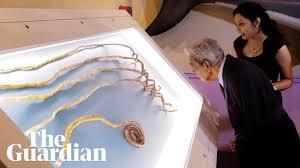 man with world s longest fingernails
