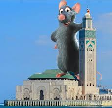صور فيسبوكيون يسخرون من فأر زعزع ايمان المصلين بمسجد الحسن الثاني