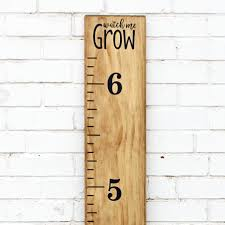 Amazon Com Little Acorns Diy Vinyl Growth Chart Ruler Decal Kit Watch Me Grow Toys Games