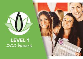 ytt 200 hour course faqs