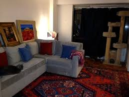 what color carpet goes with gray sofa