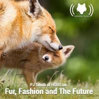 Blog - Tag: PJ Smith | The Fur-Bearers - Protecting Canadian Wildlife since  1953