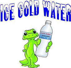 Ice Cold Water Gecko Concession Drinks Foods Vinyl Decal Harbour Signs