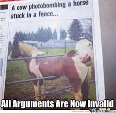 A Cow Photobombing A Horse Stuck In A Fence By Blend69 Meme Center