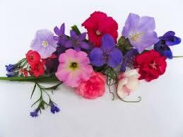 Kwiaty Na Każdą Okazję | 0800-Kwiaty.pl