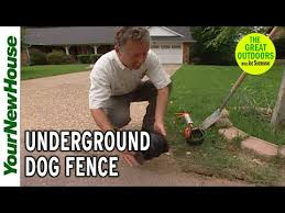 Pet Containment Underground Fencing Diy Install Youtube
