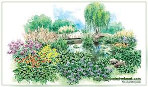 a flower garden on a wet plot with your