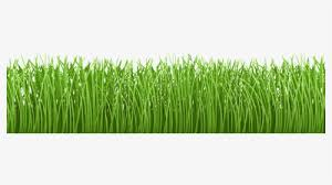 Grass With Fence Png Clip Art Gallery Grass Ground Clipart Transparent Png Transparent Png Image Pngitem
