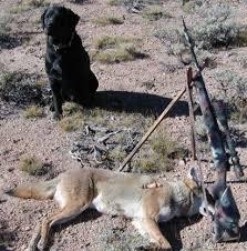varmint al s hunting page